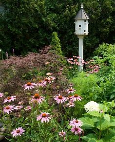 placing birdhouses in the garden, flowers, gardening, Placing birdhouses off the ground is key to keep predators away from them Do a little research as to the types of birds in your area to ensure you find a house that will work for them