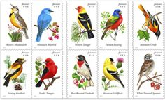 Songbirds Stamps
