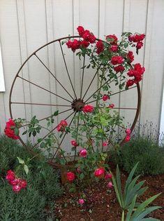 Wagon Wheel as Trellis / Garden Art Wagon Wheel als Spalier- / Gartenkunst von OSU Master Gardener, Diy Trellis, Trellis Design, Garden Trellis, Trellis Ideas, Rose Trellis, Clematis Trellis, Garden Planters, Porch Trellis, Plant Trellis