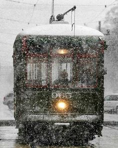now this is a rare sight in New Orleans! I can remember it snowing twice at Christmas in 30 years!