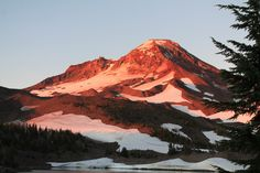 South Sister, just above our campsite, dawn