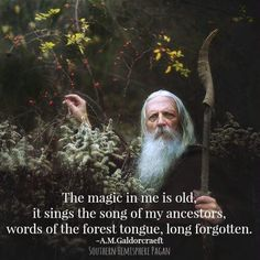 """The Magic in me is old, it sings the song of my ancestors, words of the forest…"