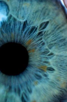 Beautiful blue eye close up.