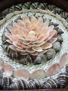 Celebration up close Seashell Art, Seashell Crafts, Shell Ornaments, Angel Ornaments, Seashell Projects, Shell Flowers, Shell Decorations, Painted Shells, Shell Collection
