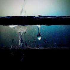 A Lonely Drop. #MicomaxA120camera