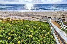 Steps leading down to Windansea Beach. La Jolla, CA, USA. © Joseph S. Giacalone—All rights reserved. #windansea #seascape #photography #buyprints #buycanvas #fineartamerica