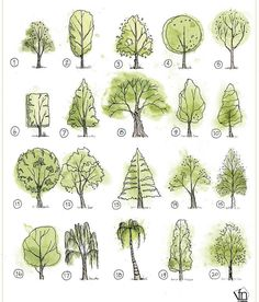 45 Super Ideas For Tree Drawing Sketches Landscapes Landscape Design Plans, Landscape Sketch, Landscape Architecture Design, Architecture Graphics, Landscape Drawings, House Landscape, Architecture Apps, Architecture Portfolio, Landscaping Design