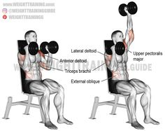 Seated elbows-in alternating dumbbell overhead press. A compound exercise. Synergists: Upper Pectoralis Major Lateral Deltoid Triceps Brachii Middle and Lower Trapezius Serratus Anterior Obliques Psoas Major Iliocas Best Shoulder Workout, Best Chest Workout, Chest Workouts, Shoulder Exercises, Fitness Workouts, Weight Training Workouts, Training Exercises, Fitness Diet, Health Fitness