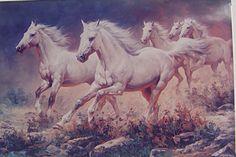 ม้าสำหรับอัศวิน Pretty Horses, Horse Love, Beautiful Horses, Horse Drawings, Animal Drawings, Painted Pony, Racehorse, Equine Art, Horse Art