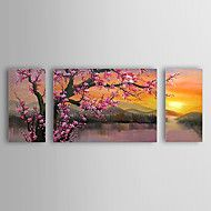 Hand-Painted Floral/BotanicalClassic / Traditional Three Panels Canvas Oil Painting For Home Decoration – AUD $ 781.64