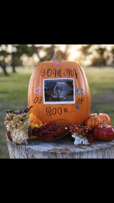 Parenting The Strong Willed Child Fall Gender Reveal, Baby Shower Gender Reveal, Pregnant Halloween, Baby Halloween, October Pregnancy Announcement, Pumpkin Pregnancy Announcement, Pregnancy Announcements, October Baby Showers, Baby Shower Fall