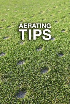 Lawn Aeration: Tips