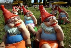 G Noooooooomes Garden Gnome Liberation Front: Did you know there was such a thing? Apparently it's a group of (crazy) people in Europe whose mission is to rescue gnomes from their lives in boring middle-class gardens and return them to their original homes in the mountains.