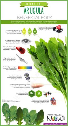 Even though arugula is less recognized than other curciferous vegetables like…