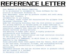 lettersofrecommendationsamples sample reference letter sample reference letter image