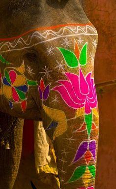 Painted elephants, Amber Fort, Amber (near Jaipur), Rajasthan, India by Blaine Harrington Photography. Asian Elephant, Elephant Love, Indian Elephant Art, Elephant India, Elephant Canvas, Elephants Never Forget, Mundo Animal, Travel Photographer, Indian Art