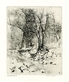 Woods in Winter - Landscape with bare trees, snow-covered ground and a stream in th foreground c.1906-1929 Drypoint