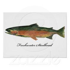 Freshwater Steelhead Trout Fish Posters