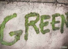 This is the coolest DIY Project! How To Make Moss Graffiti