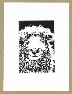 Sheep print of Dartmoor Sheep - Original, hand printed linocut, printed on hand press, available in black ink. Signed and titled in pencil by the artist. Please Note : This is an Original handmade Art Print - NOT a Digital Print. Full name for this breed is Dartmoor Grey Faced
