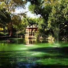 Rincones mágicos del #Parque de María Luisa, #Sevilla.