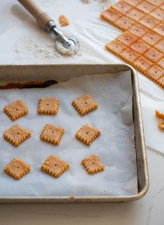 Paprika Cheddar Cheez-Its - A Cozy Kitchen Appetizer Recipes, Snack Recipes, Cooking Recipes, Biscuits, New Recipes, Favorite Recipes, Savory Snacks, Appetisers, Kids Meals
