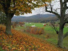West Va, West Virginia, Nottingham, Cool Pictures, Vineyard, Road Trip, Heaven, Country Roads, Outdoor