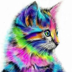 Diamond painting kits now in sale, free worldwide shipping! The most amazing hobby from cross stitch! Cross Paintings, Animal Paintings, Art Paintings, Acrylic Painting Canvas, Diy Painting, Diy Canvas, Diy Broderie, Cat Posters, Paint By Number Kits