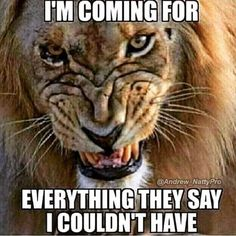 Strength Quotes : QUOTATION - Image : Quotes Of the day - Description Yes Sharing is Caring - Don't forget to share this quote Lion Quotes, Me Quotes, Qoutes, Motivational Quotes, Inspirational Quotes, Motivational Thoughts, Quotations, Fitness Quotes, Motivation Inspiration