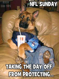 Everyone needs a day off......