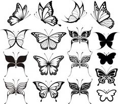 Few side and frontal butterflies for the top and bottom of my tattoo.