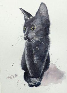 black cat, watercolor