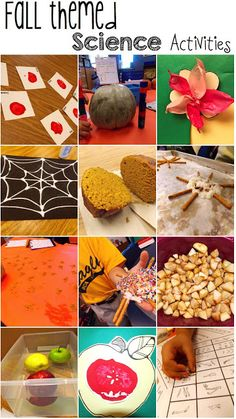 Fall themed science experiments and activities