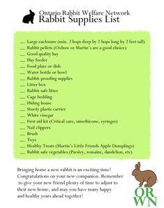 New Rabbit Checklist; rabbit supplies