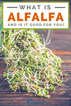 Find information about alfalfa and its potential health benefits, as well as nutrition facts, safety, side effects and more. Learn more here: https://authoritynutrition.com/alfalfa/