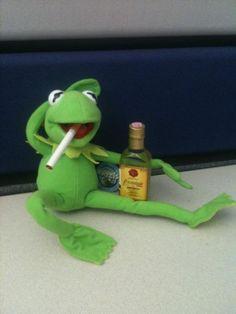 Funny Kermit Memes, Cartoon Memes, Sapo Kermit, Wow Meme, Meme Meme, Sapo Meme, Cute Frogs, Kermit The Frog, Cute Love Memes