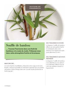 #Fragrance #Souffle #Bambou #PartyLite www.partylite.fr