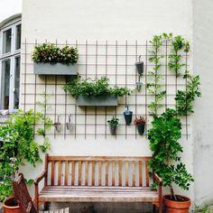 A little place for us. Patio Wall Decor, House Plants Decor, Plant Decor, Outdoor Wall Decorations, Vertical Garden Design, Vegetable Garden Design, Cinder Block Garden, Walled Garden, Garden Boxes