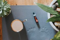Calling all Yoga lovers! Our Spice Drops are a great addition when making herbal teas. They are easy to use, with no preparation or mess, helping you to feel more Zen. We will be exhibiting at the Om Yoga Show in London from the 20th - 22nd of October. We are at stand E24, be sure to come and say hi! Tastings will be available throughout the day. ☯️ Making Herbal Tea, Herbal Teas, Say Hi, Herbalism, Zen, Spice, October, Lovers, Yoga