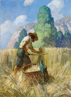 N.C. WYETH  Robinson Crusoe and His Grain Field  Oil on Canvas  40.75″ x 30.25″