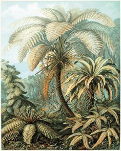 Image result for victorian palmtrees