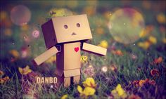 Danbo Wallpapers | HD Wallpapers Early