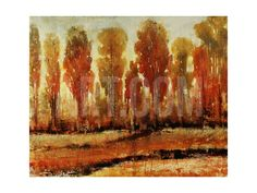 Texture of Trees Giclee Print by Tim O'toole at Art.com