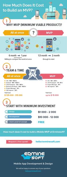 How Much Does It Cost to Build an MVP by Erminesoft
