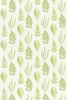 Angel Ferns Olive (221928) - Sanderson Fabrics - A pretty botanical fern print in fresh olive green on white, which perfectly complements the wallcovering. Please request sample for true colour match.