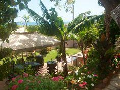 Ponce, jardin con vista al mar!