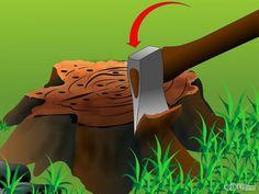 Kill a Tree Stump Step 5.jpg