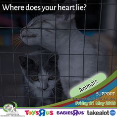 Our greatness can be judged by the way we care for our animals! - Support the ANIMALS sector on International Tekkie Tax Day - Friday, 31 May 2019. Get your Tekkie Tax merchandise from www.tekkietax.org, www.takealot.com, visit any @ToysRUs/BabiesRUs store or contact us on: 012 663 8181 – reception@tekkietax.org #tekkietax #mezzzmerize #tekkietize #lovingtekkies #projectk4k #TekkieTaxDay South African Celebrities, Long Term Care Insurance, Tax Day, Disability, Grateful, How To Find Out, Wings, Reception, Friday