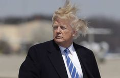 12 Photos Of Trump Boarding Air Force One On A Very Windy Day Donald Trump Hair, David Mack, Bad Photos, Windy Day, Air Force Ones, Bad Hair Day