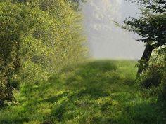 Naturreise Kräuterreise Reise Kreta Steiermark